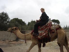 Camel sm1.jpg