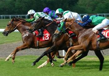 HorseRace1.jpg